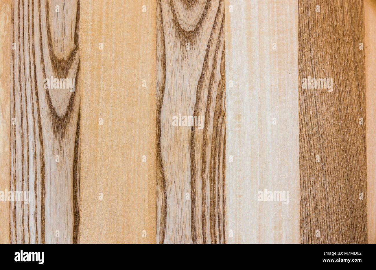 linden und eschenholz textur ein fragment eines holz panel