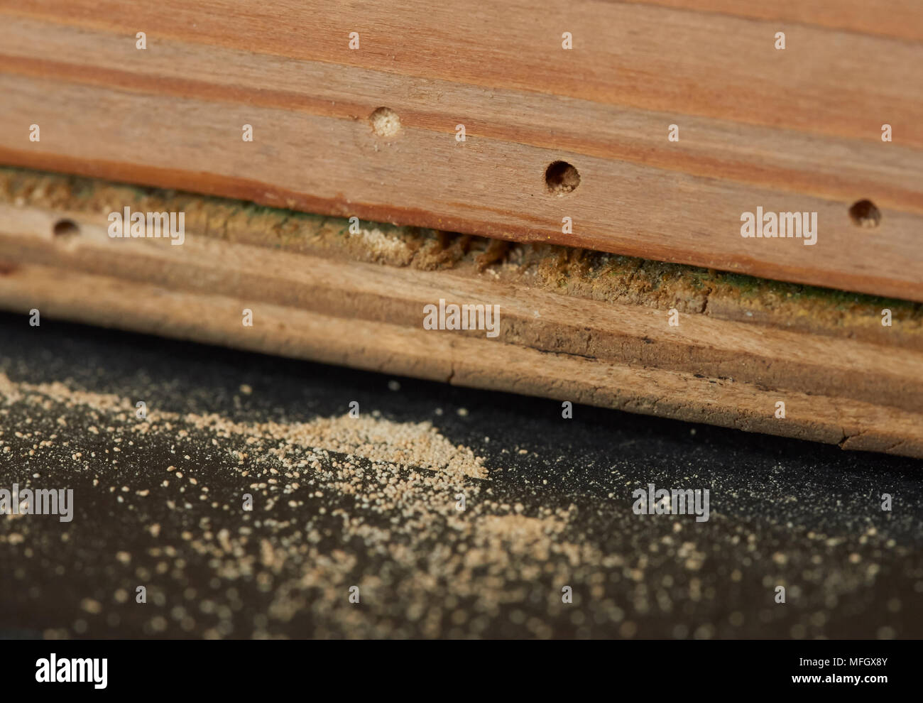 Holzwurm In Möbeln Woodworm Holes Stockfotos And Woodworm Holes Bilder Alamy