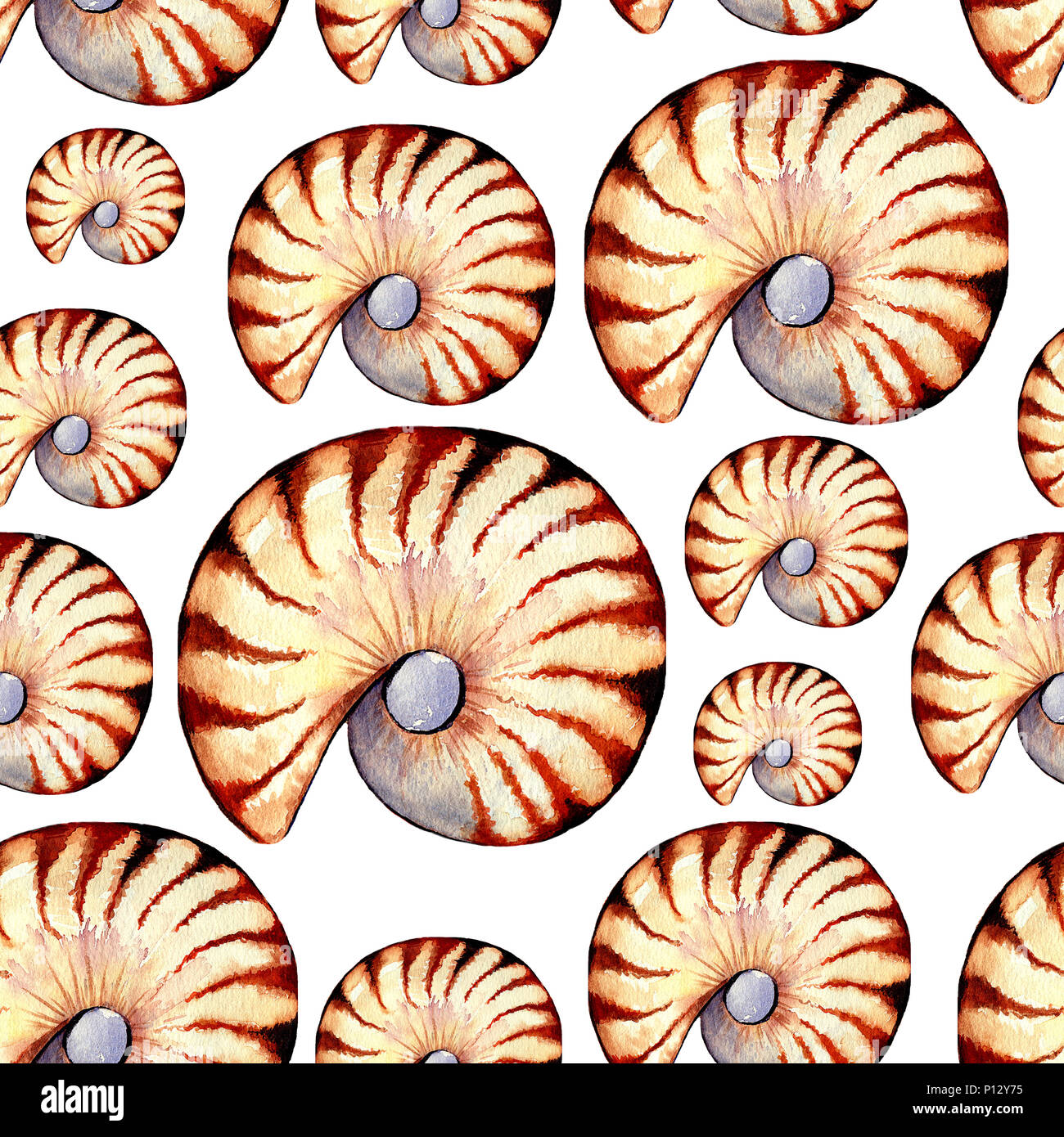 Wandfliese Nautilus Abstract Background Blue Floral Ornament Stockfotos