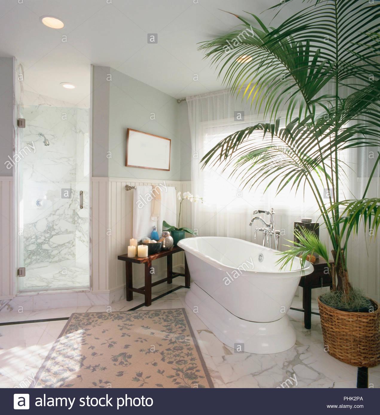 Badezimmer Pflanzen Balkon Blumen Hängend Bestimmt Pflanzen Fur