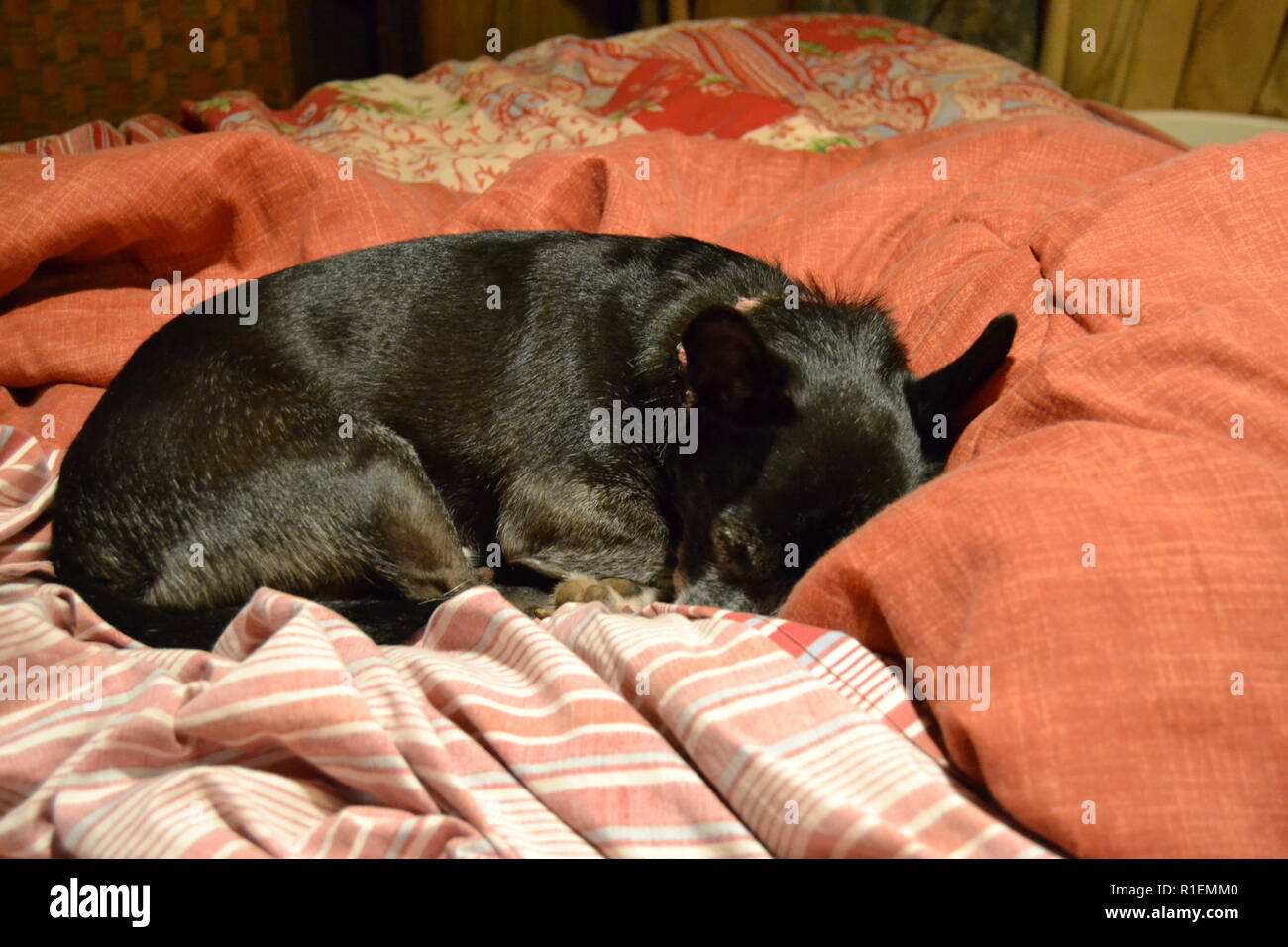 Lazy Jack Sitzsack Lazy Jack Stockfotos Lazy Jack Bilder Alamy