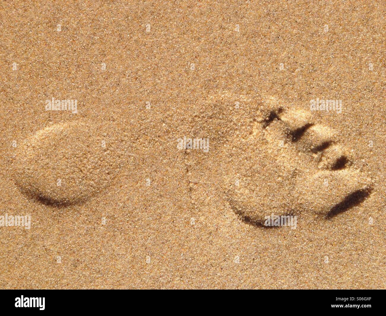 Fußabdruck Bilder Footprint Stockfotos And Footprint Bilder Alamy
