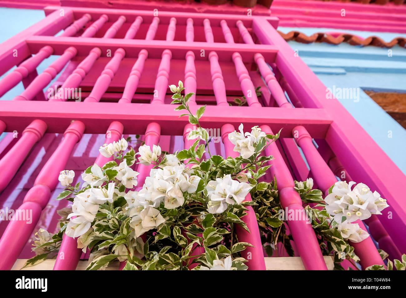 Fenster Blumenkasten Holz