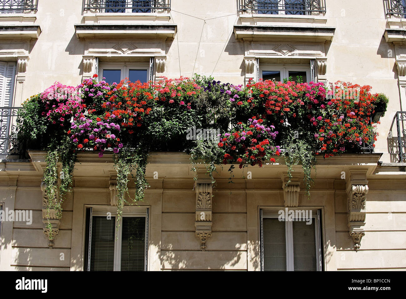 Balcon Fleuri Plein Sud France Paris Balcon Fleuri Banque D 39images Photo Stock