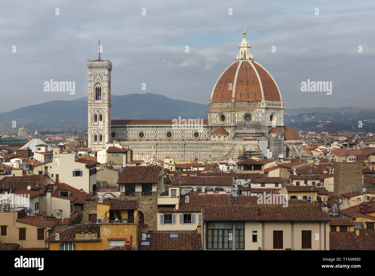Toit Terrasse Florence Townscape From Florence Photos Townscape From Florence Images