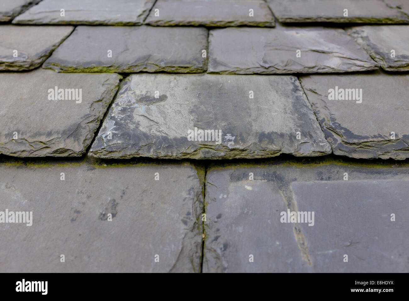 Piastrelle di ardesia rivestimento in pietra