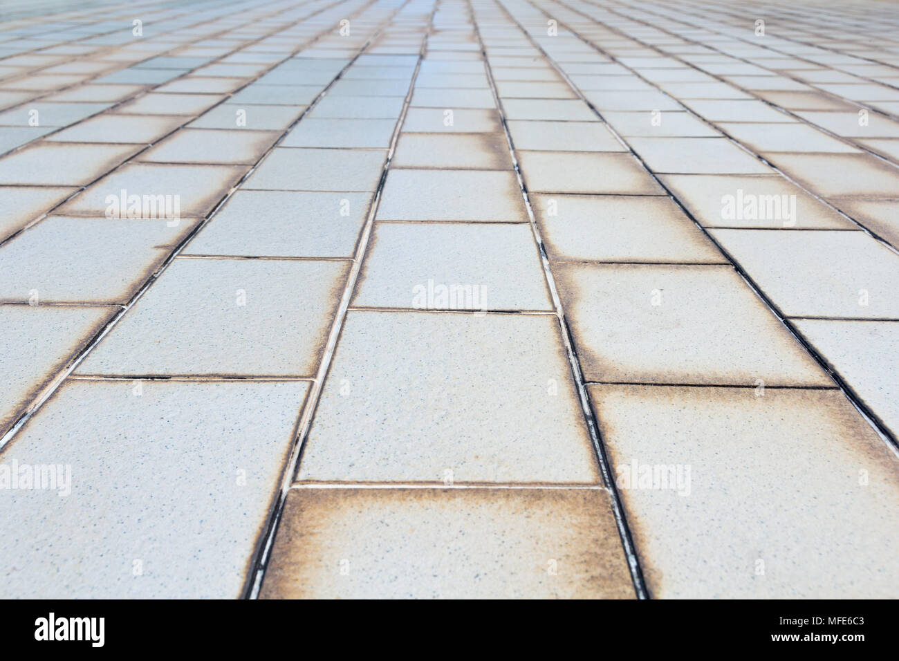 Pavimento piastrelle texture texture porcellana plumage