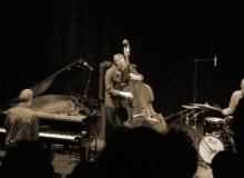 Stefan Orins Trio @Tourcoing Jazz Festival 2014 ©Céline