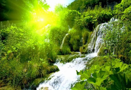 Water Falling Live Wallpaper Download Forest Waterfall At Sunrise Waterfalls Amp Nature