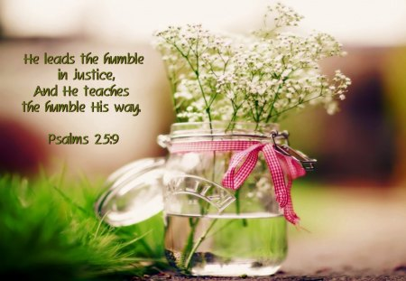 Free Bible Quotes Wallpaper Humble Flowers Amp Nature Background Wallpapers On Desktop