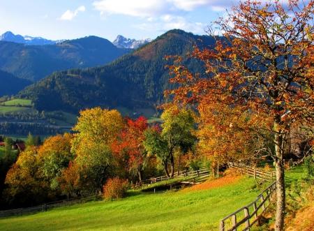Falling Leaves Wallpaper Free Download Austrian Autumn Landscape Mountains Amp Nature Background