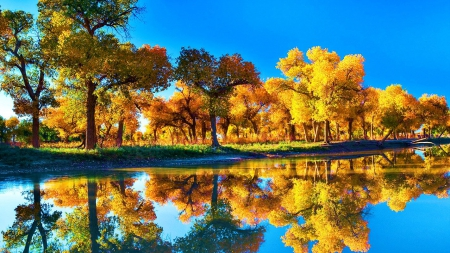 Free Desktop Wallpaper Fall Season Lake Louise Lakes Amp Nature Background Wallpapers On