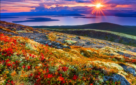 Fall Mountaons In The Sun Wallpaper Beautiful Sunrise Mountains Amp Nature Background