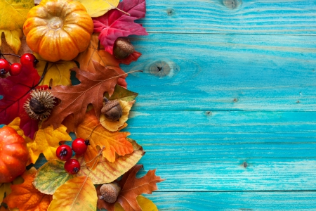 Free Fall Cell Phone Wallpapers Autumn Leaves Other Amp Nature Background Wallpapers On