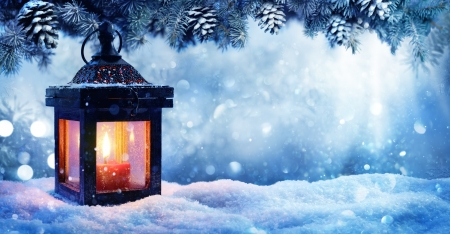 Download Wise Quotes Wallpapers Winter Lantern Photography Amp Abstract Background