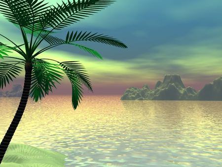 Animated Wallpapers For Desktop Windows Xp Free Download Florida Keys Other Amp Nature Background Wallpapers On