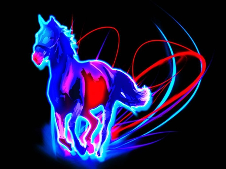 Neon Animal Print Wallpaper Color Horse Horses Amp Animals Background Wallpapers On