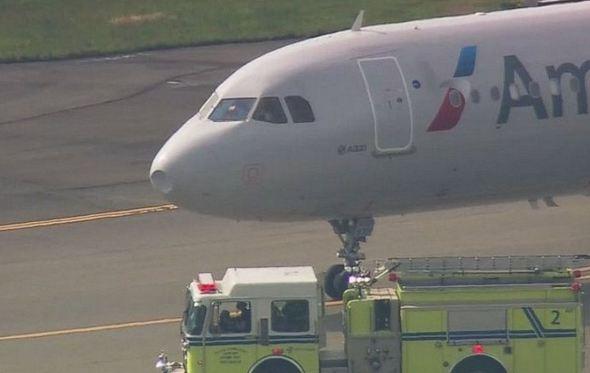 Plane Makes Emergency Landing After Bird Strike Emirates24 7