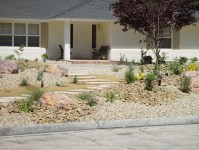 Grass Conversion - Large Front Yard  Cacti Landscapes Las ...