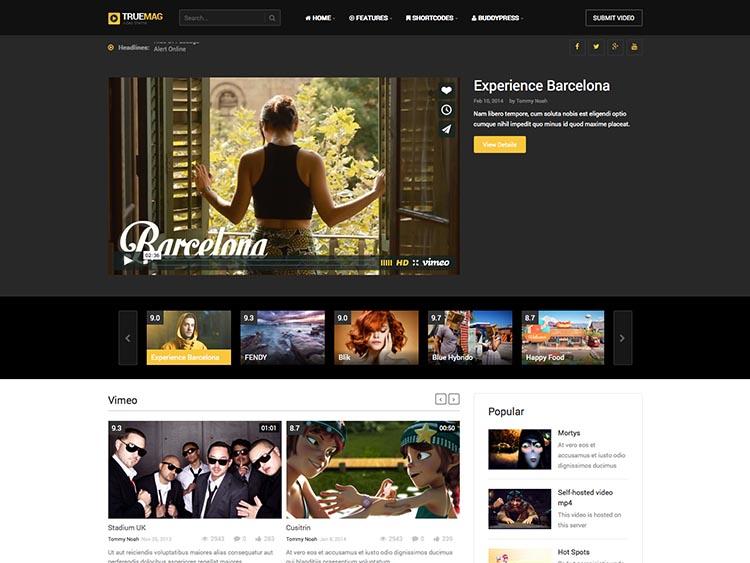 Video Theme WordPress 2015 Premium or Free?