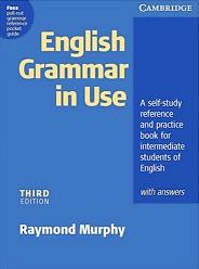 English Grammar In Use cada centavo conta