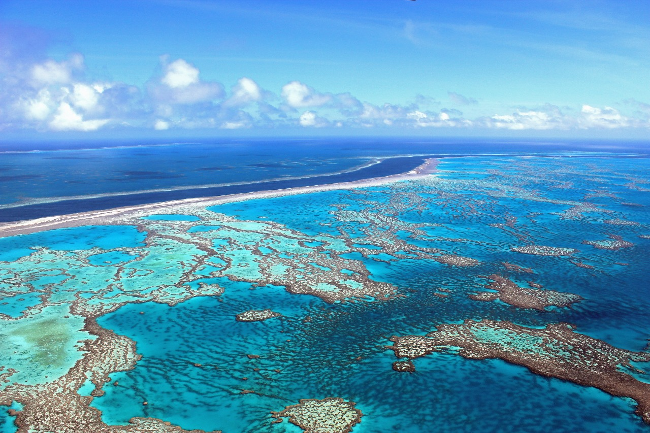 White Goods Australia Cairns Scenic Flights Great Barrier Reef Tours