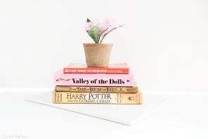 A Little Book Haul