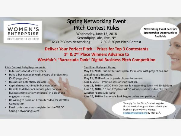Jun 13 Spring 2018 Pitch Contest Registration White Plains, NY Patch - 5 minute business plan