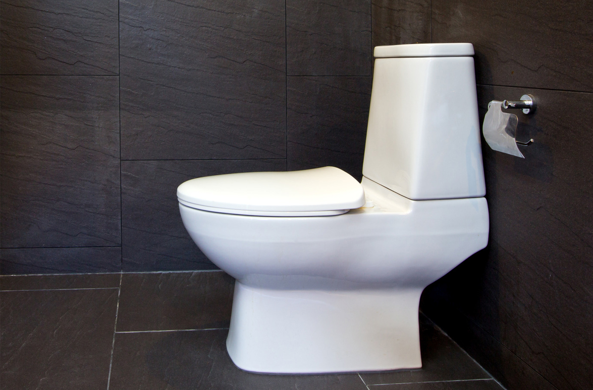 Install A Toilet How To Install A Toilet Caldwell Plumbing Serving The Gta And