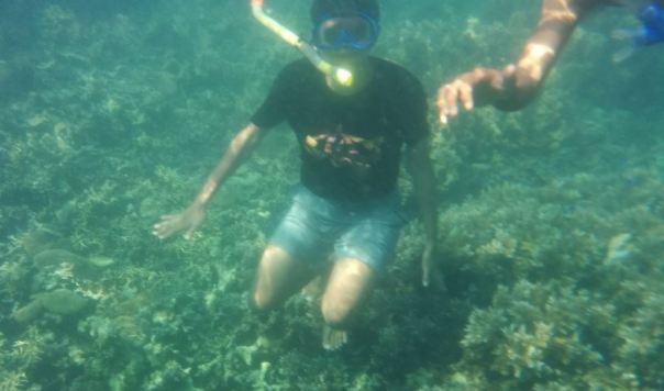 tanjung putus : menyelam di pantai yang jernih