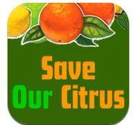 Save Our Citrus