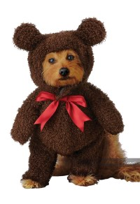 TEDDY BEAR / DOG COSTUME