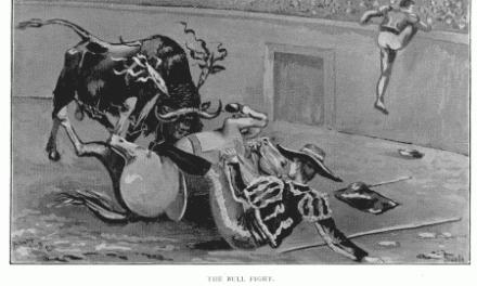 A Bull Fight