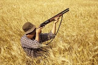 Shooting Down Unconstitutional anti-SLAPP statute