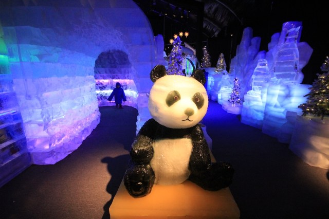 Panda Ice Sculpture 640x426