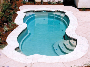 Free Form Swimming Pools In Maryland Virginia Dc