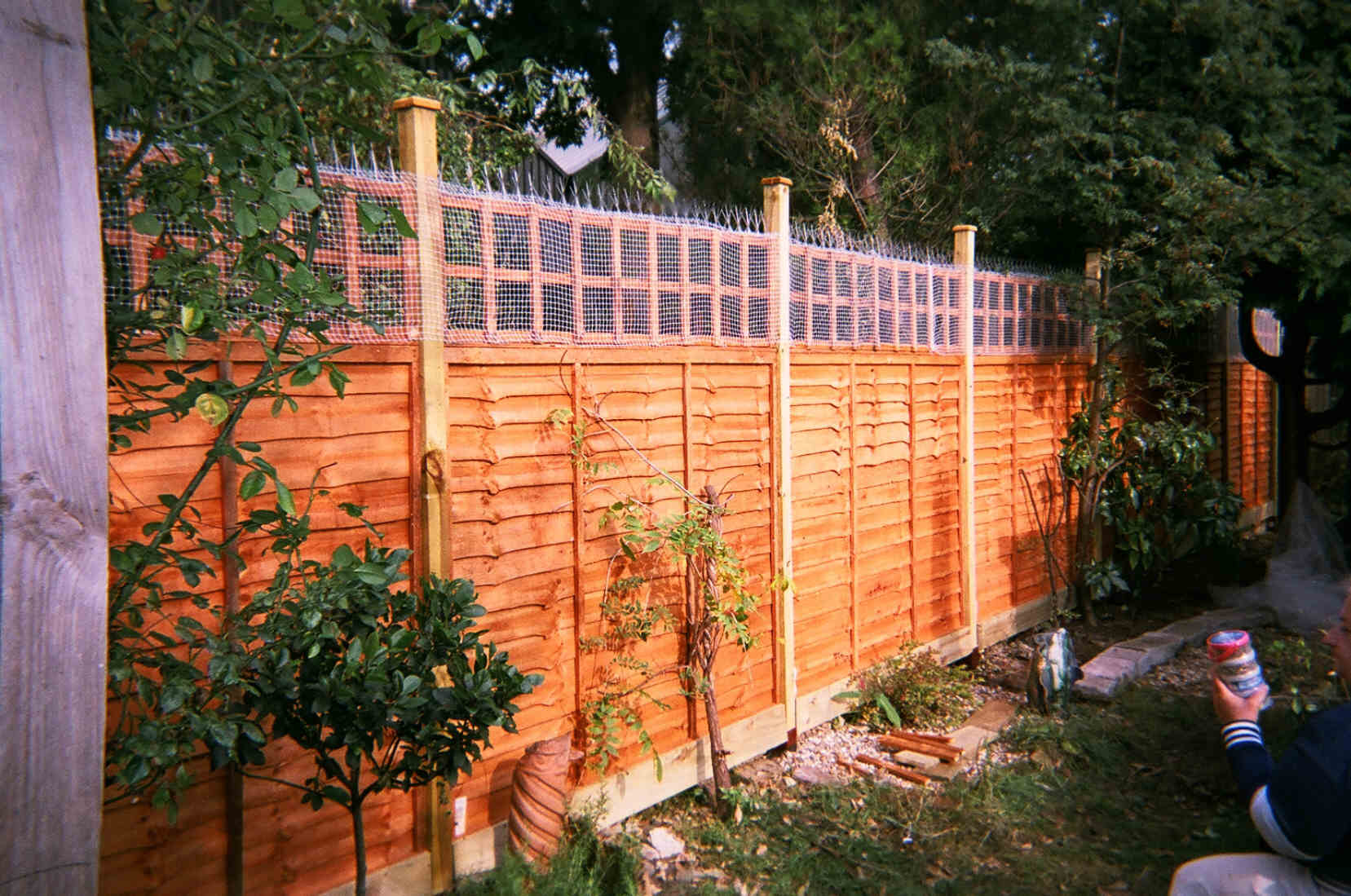 Goedkope Tuinafscheiding Garden Fences And Fencing Works By Calypso Landscaping