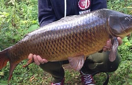 Best Fish of Season Claims