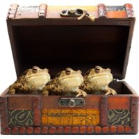 Mad as a box of frogs? Phrases that suddenly become popular.