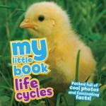 Lifecycles by Camilla de la Bedoyere