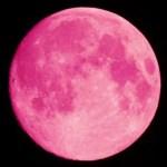 2 giugno luna piena …la luna della rosa o del miele…