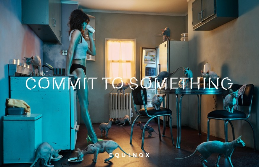 equinox-commit-to-something-3-cotw