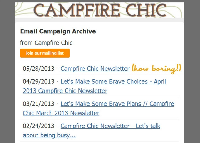 Newsletter Subject Line - Things to Triple Check Before Hitting Send by Campfire Chic