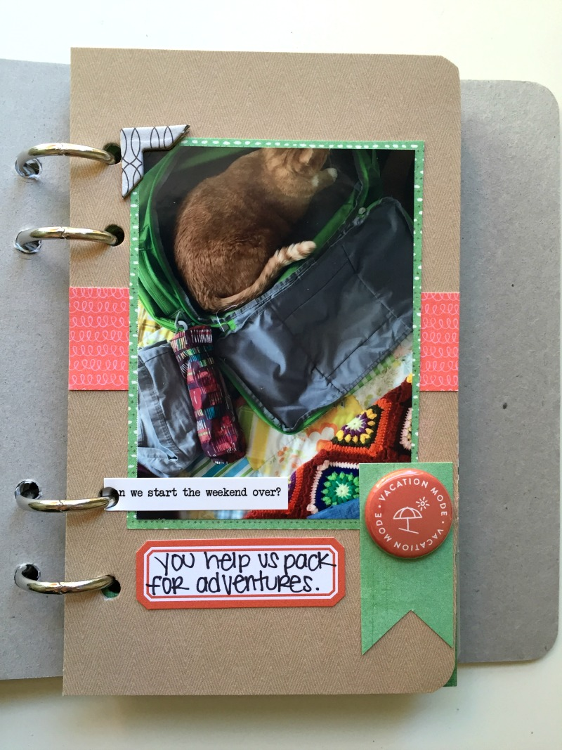 Scrapbook Album by Kam of Campfire Chic