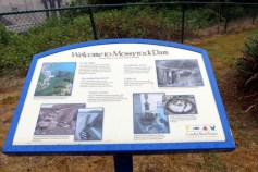 Welcome to Mossyrock Dam