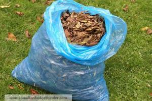 Leaves for compost