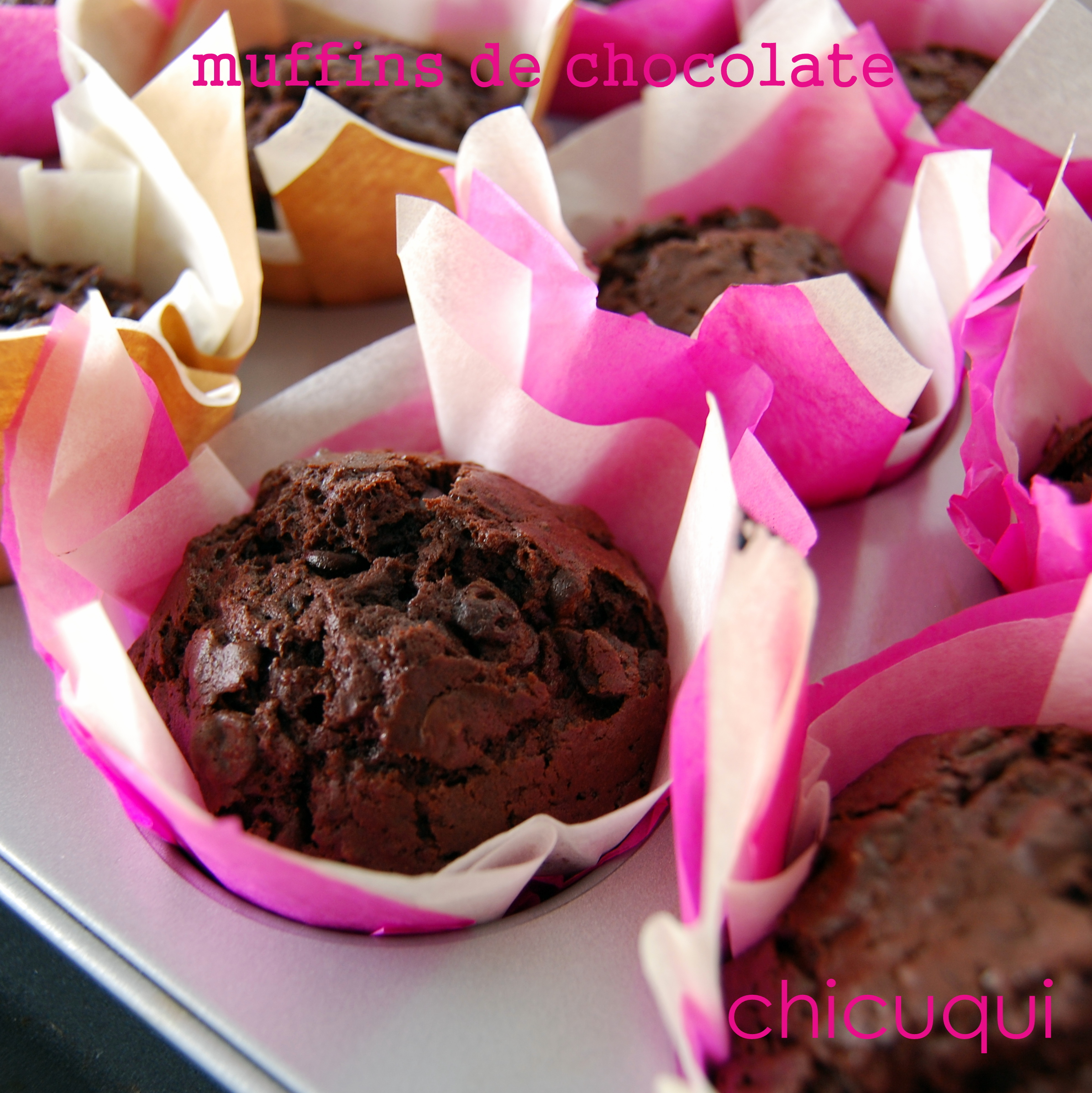 Canal Cocina Chocolate Muffins De Chocolate