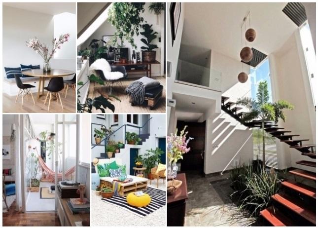 como decorar la casa con plantas naturales