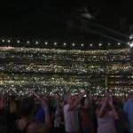 Cellphone Fireflies