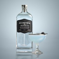 The 10 Must Have Gins for Home